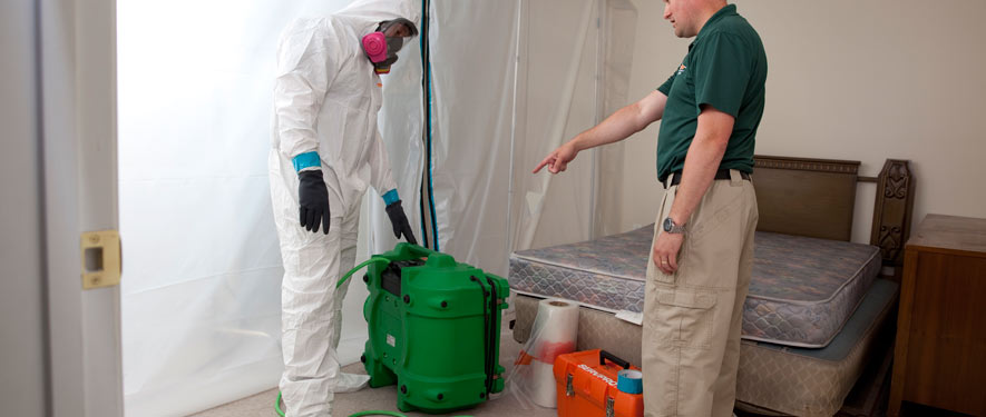 Fort Worth, TX mold removal process
